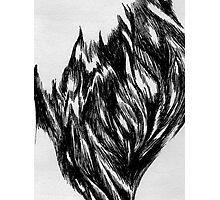Fur Photographic Print