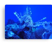 Nature in the Ocean Canvas Print