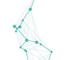 Aquarius Geometric Constellation by Julie Campbell