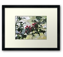Holly On The Bush Framed Print