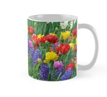 Colorful spring garden Mug