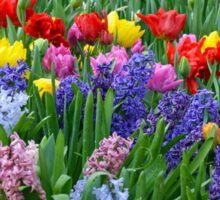Colorful spring garden Sticker
