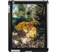 Woodland iPad Case/Skin