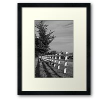 Tree Lined Fence Framed Print