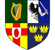 Arms of Four Provinces of Ireland  Photographic Print