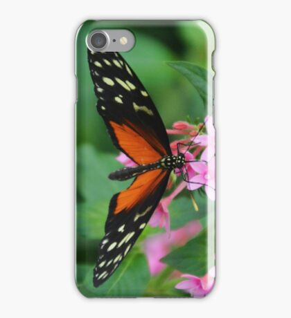 Pteronymia Butterfly iPhone Case/Skin