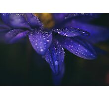 These Tears You Cry Photographic Print