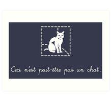 Le Chat de Schrödinger Art Print