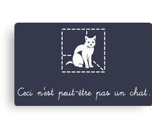 Le Chat de Schrödinger Canvas Print