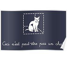 Le Chat de Schrödinger Poster