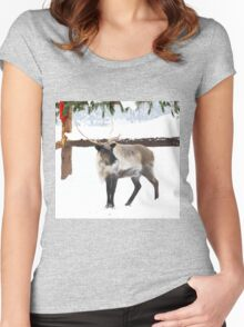 Reindeer for Christmas. Women's Fitted Scoop T-Shirt