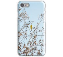 Little Yellow Bird iPhone Case/Skin