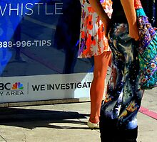 Whistle - We Investigate by Michael May