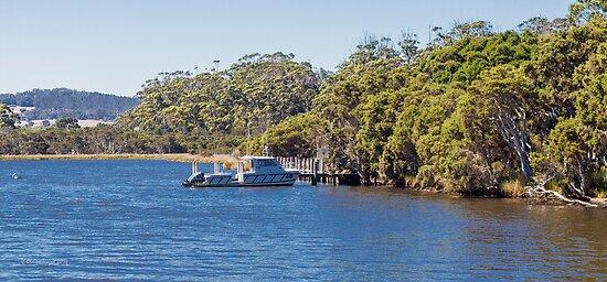 Walpole Inlet, Western Australia #5 by Elaine Teague