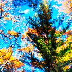 Coniferous Holdout by leifrogers