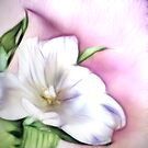 Fractalius Tulip by shalisa
