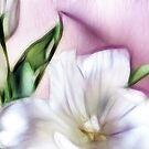 Fractalius Tulip 3 by shalisa