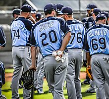 Tampa Bay Rays Baseball Team by Chris L Smith