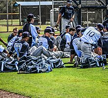 Players of the Tampa Bay Rays in Florida by chris-csfotobiz