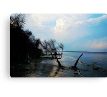 Folly Beach, US Canvas Print