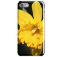 Daring Daffodils iPhone Case/Skin