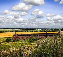 Rolling Landscape of Dorset by chris-csfotobiz