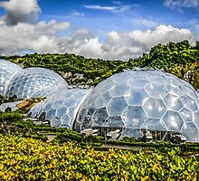 The Eden Project at St. Austell Cornwall by Chris L Smith