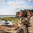Dawlish Coastline of England by Chris L Smith