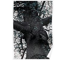 Just a Tree Really Poster