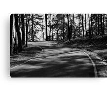 Mountain Road in Hot Springs Arkansas Canvas Print