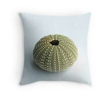 Sea Urchin Shell Throw Pillow