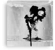 171/365 Canvas Print