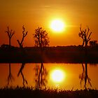 Outback Reflections, Kakadu National Park by Cherrybom