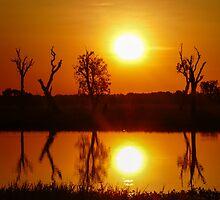 Outback Reflections, Kakadu National Park by Cherrybom