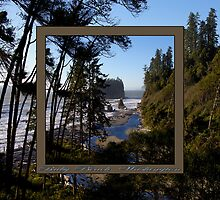 awesome ruby beach, wa (2x square) by dedmanshootn