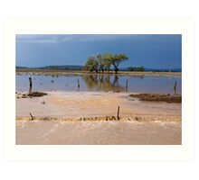 Flood Water in the Darling Downs 2014 Art Print