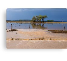 Flood Water in the Darling Downs 2014 Canvas Print