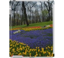 flowers at the forest iPad Case/Skin