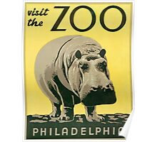 Visit the Zoo, Hippo Poster
