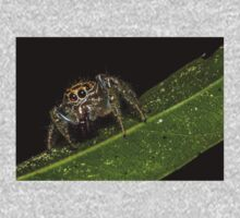 Jumping Spider 1 Kids Clothes