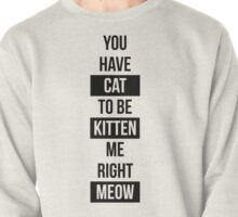 You have cat to be kitten me right meow! Pullover
