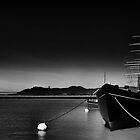 The C.A. Thayer at San Francisco Maritime by leifrogers
