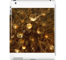 Dandelion Water Orbs iPad Case/Skin