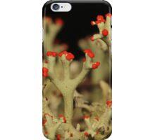Cladonia Lichen iPhone Case/Skin