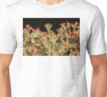 Cladonia Lichen Unisex T-Shirt