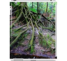 Cascading Roots iPad Case/Skin