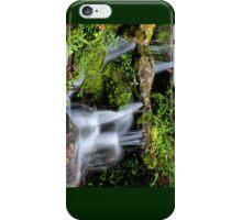 Dunellon Falls iPhone Case/Skin