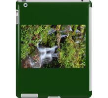 Dunellon Falls iPad Case/Skin