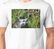 Dunellon Falls Unisex T-Shirt