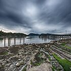 Miners Bay, Storm Coming by toby snelgrove  IPA